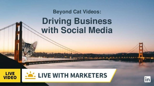 Beyond Cat Videos: Driving Business with Social Media Slide 2