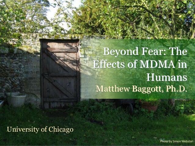 Beyond Fear: TheEffects of MDMA inHumansMatthew Baggott, Ph.D.University of ChicagoPhoto by Simon Webster