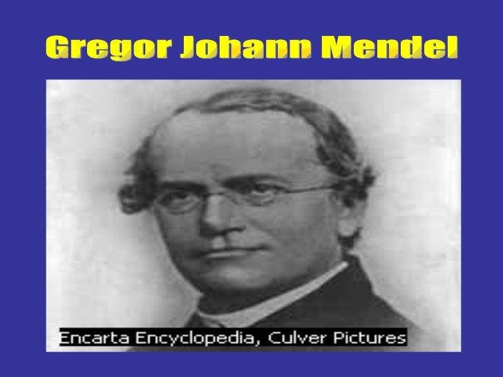 Mendel, Gregor Johann (1822-1884), Austrian monk, whose    experimental work became the basis of modern hereditary theory....
