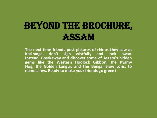 Beyond the Brochure, Assam The next time friends post pictures of rhinos they saw at Kaziranga, don't sigh wistfully and l...