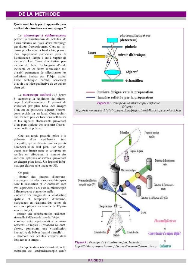 Reprogrammation épigénétique et Cancer