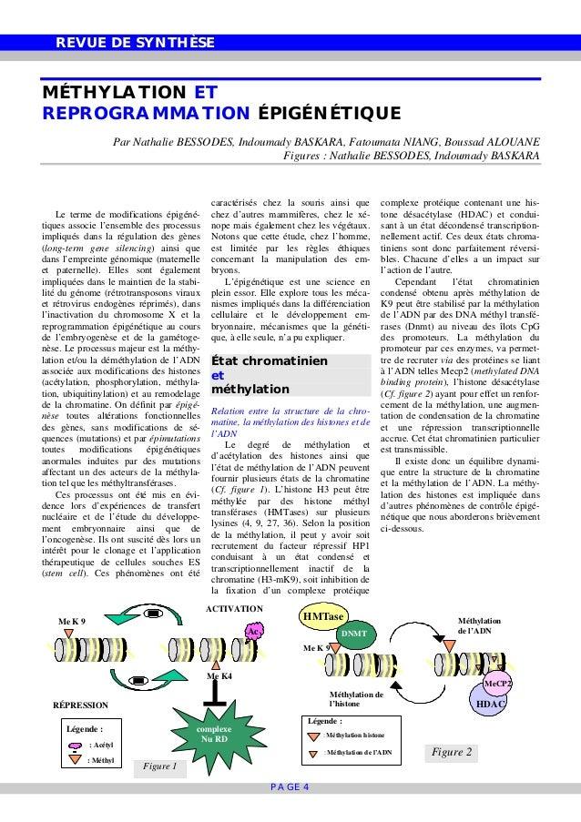 REVUE DE SYNTHÈSE PAGE 4 Me K 9 Me K4 Ac complexe Nu RD RÉPRESSION ACTIVATION Légende : : Acétyl : Méthyl Me K 9 DNMT HMTa...