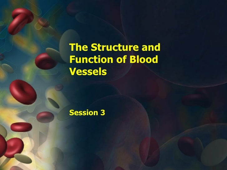 The Structure and Function of Blood Vessels Session 3