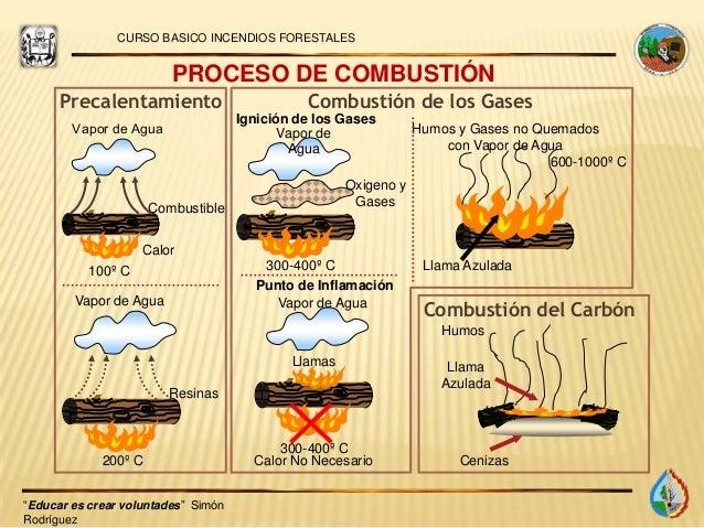 Cómo iniciar un incendio forestal 9