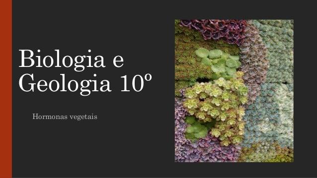 Biologia e Geologia 10º Hormonas vegetais