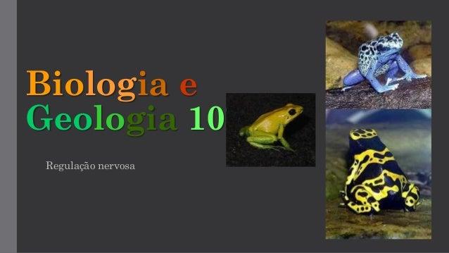 Biologia e Geologia 10º Regulação nervosa