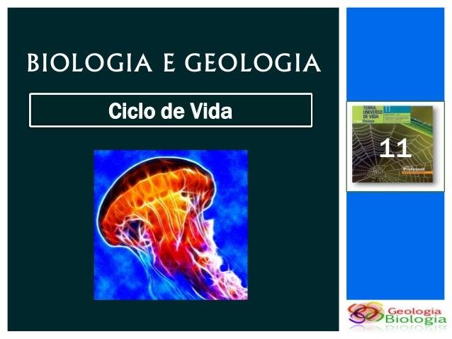 BIOLOGIA E GEOLOGIA     Ciclo de Vida                      11