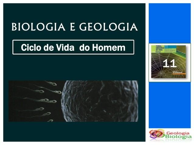 BIOLOGIA E GEOLOGIA Ciclo de Vida do Homem                          11