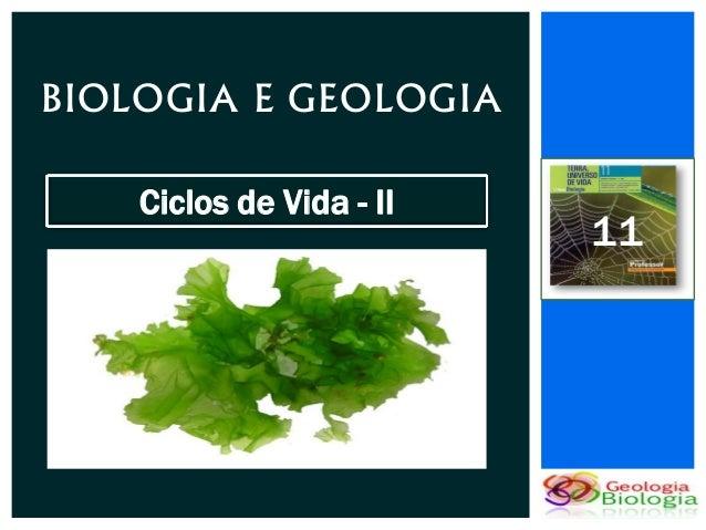 BIOLOGIA E GEOLOGIA    Ciclos de Vida - II                          11