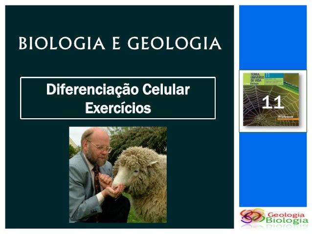 BIOLOGIA E GEOLOGIA  Diferenciação Celular        Exercícios        11