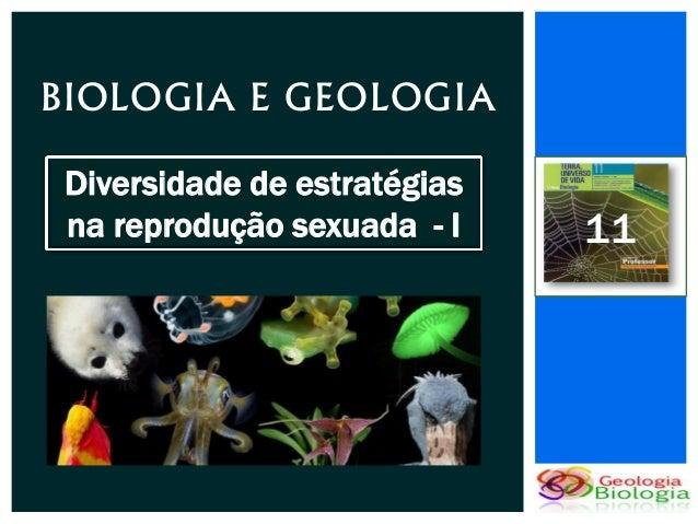 BIOLOGIA E GEOLOGIA Diversidade de estratégias na reprodução sexuada - I    11