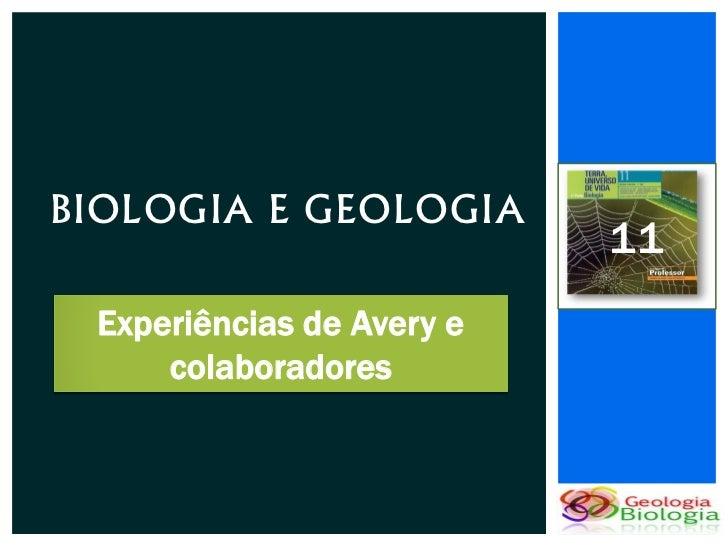 BIOLOGIA E GEOLOGIA                           11 Experiências de Avery e     colaboradores