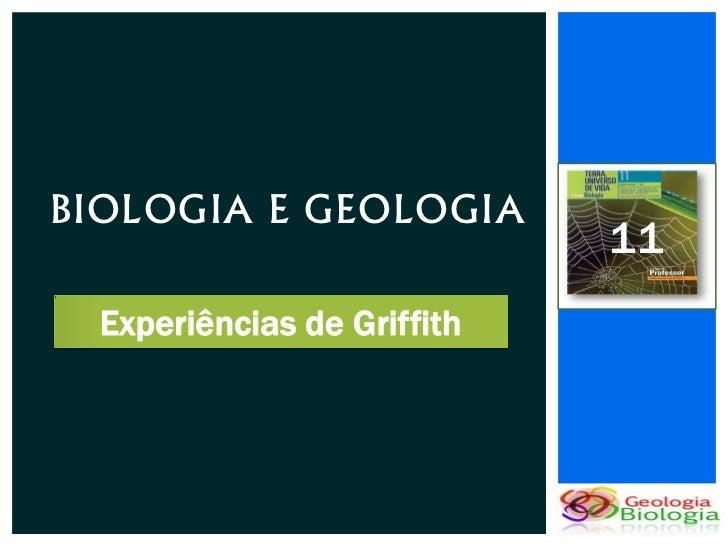 BIOLOGIA E GEOLOGIA                             11  Experiências de Griffith