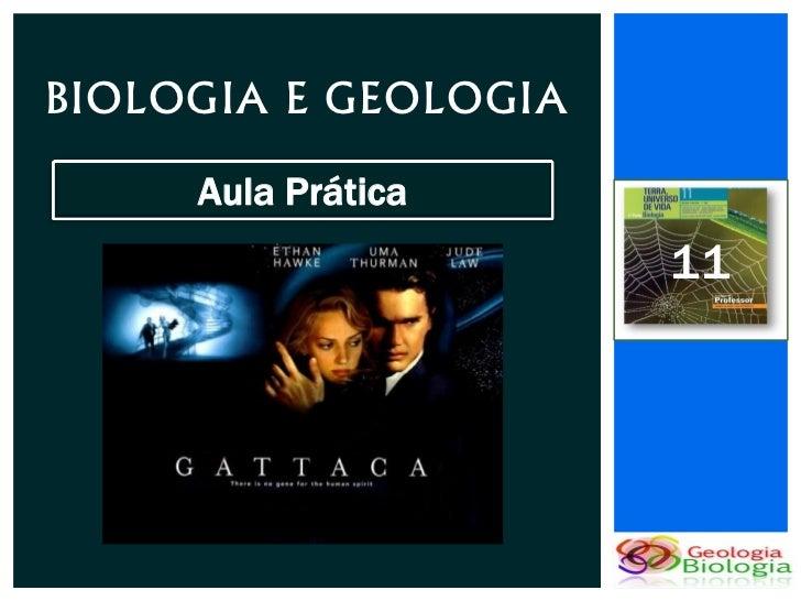BIOLOGIA E GEOLOGIA     Aula Prática                      11