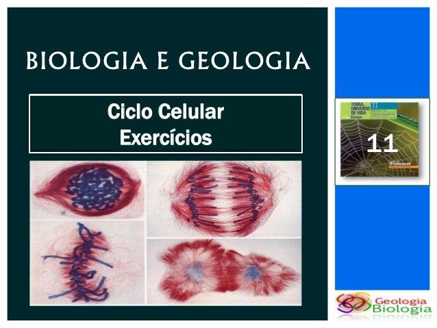 BIOLOGIA E GEOLOGIA     Ciclo Celular      Exercícios      11