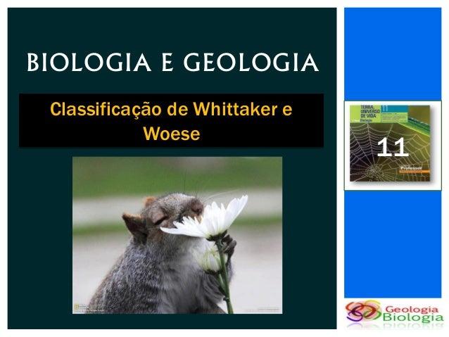 BIOLOGIA E GEOLOGIA Classificação de Whittaker e            Woese                                11