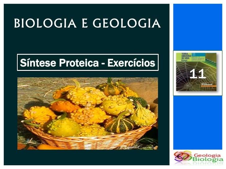 BIOLOGIA E GEOLOGIASíntese Proteica - Exercícios                                11