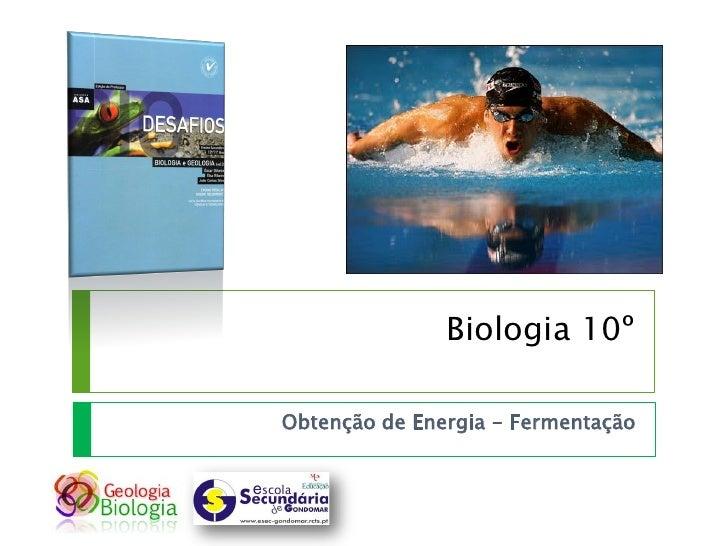 Biologia 10º  Obtenção de Energia - Fermentação