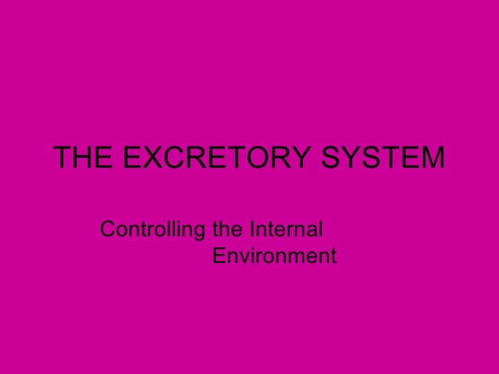 THE EXCRETORY SYSTEM  Controlling the Internal              Environment
