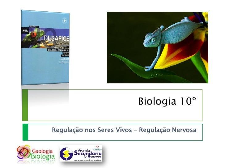 Biologia 10º  Regulação nos Seres Vivos – Regulação Nervosa