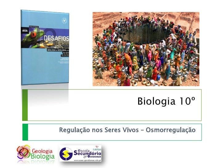 Biologia 10º  Regulação nos Seres Vivos – Osmorregulação