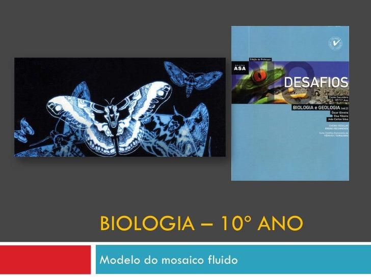 BIOLOGIA – 10º ANO Modelo do mosaico fluido