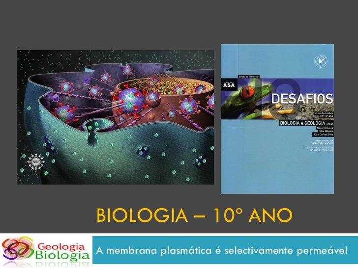BIOLOGIA – 10º ANO A membrana plasmática é selectivamente permeável