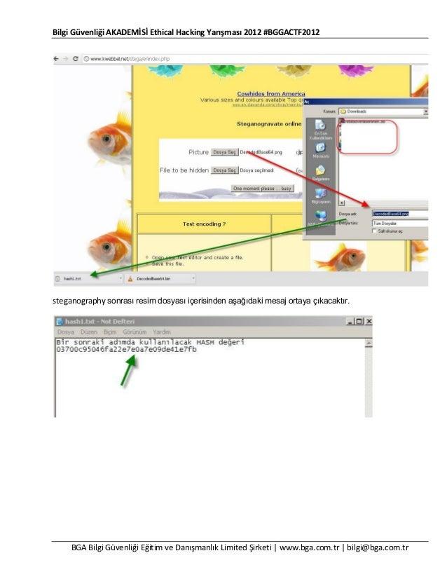 Bilgi Güvenliği AKADEMİSİ Ethical Hacking Yarışması 2012 #BGGACTF2012  steganography sonrası resim dosyası içerisinden aşa...
