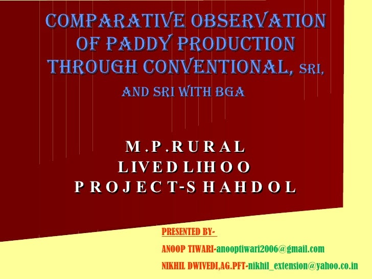 Comparative Observation of Paddy Production through conventional,  SRI, and SRI WITH BGA   M.P.RURAL LIVEDLIHOO PROJECT-SH...