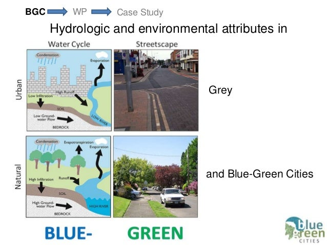 Blue Green Cities At Icfm6
