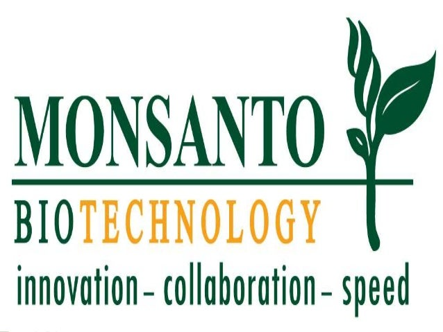 Case study on Monsanto