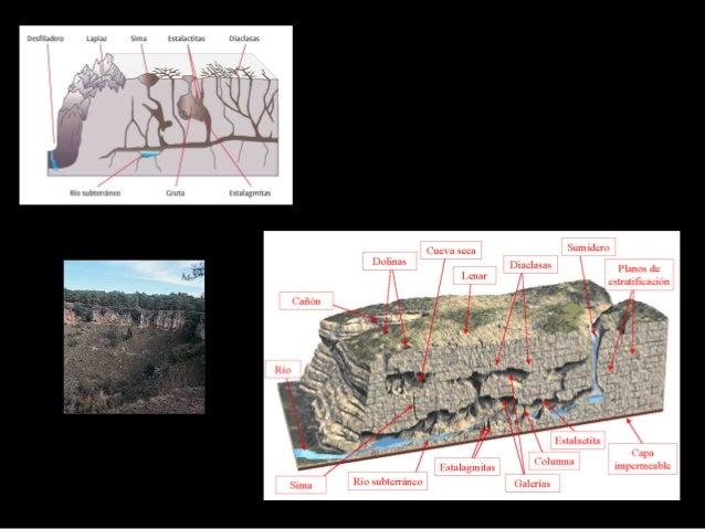 Tipos de Meteorización Meteorización Biológica Alteración de las rocas por los seres vivos. Estos organismos pueden la met...