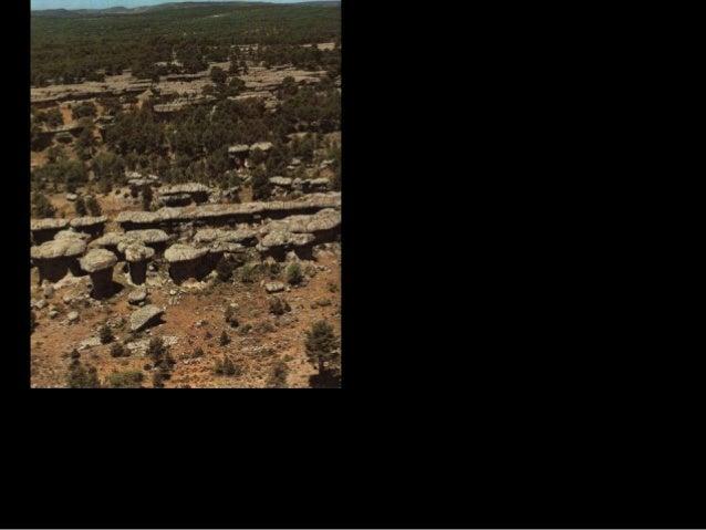 La litología tiene una influencia decisiva sobre determinados mecanismos. Hay rocas, como las cuarcitas, que por su estabi...