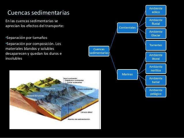 Pudinga Brecha Areniscas Rocas Sedimentarias Detríticas