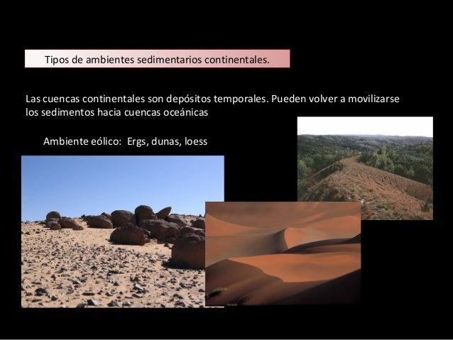 Arcilla y marga Arcilla Rocas Sedimentarias Detríticas
