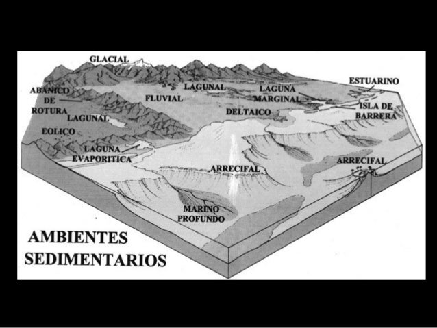 Halita, Silvina y Yeso Caliza, Dolomía y Caliza orgánica Rocas sedimentarias de precipitación química