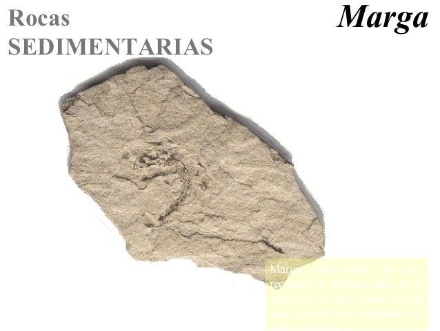Bg geodinámica externa