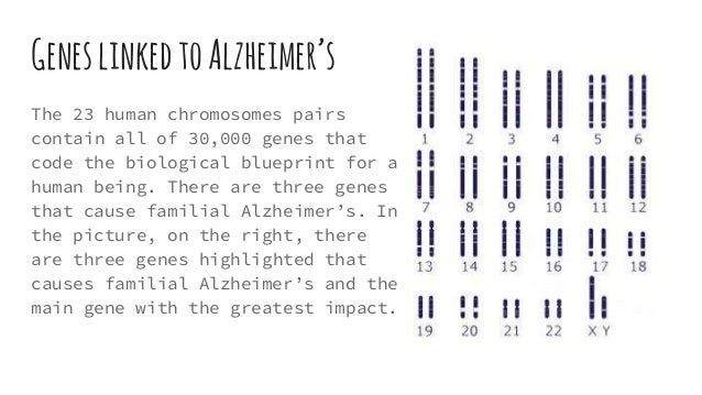 biological factors causing alzheimer s disease In mild cognitive impairment (mci), thepre-dementia stage of alzheimer's disease  (ad), pharmacological treatment is ineffective,.