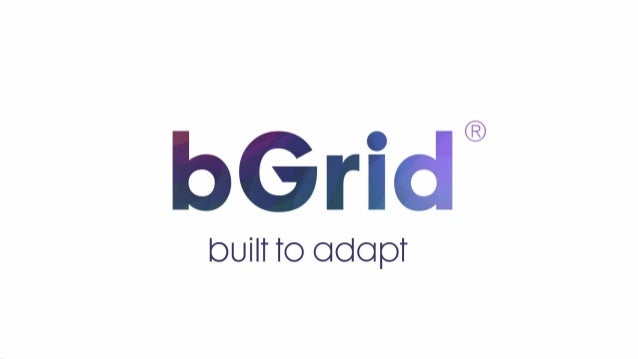 The bGrid Company 2015 400% growth/ year 30 fte Office at: Sarphatistraat 612 1018 AV Amsterdam