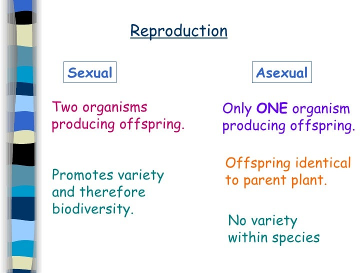 Reproduction Asexual Sexual Only  ONE  organism producing offspring. Offspring identical to parent plant. No variety withi...