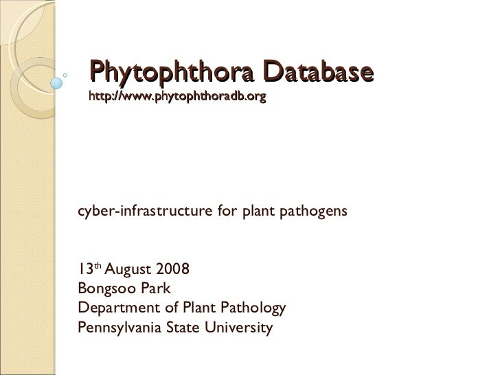 Phytophthora Database http://www.phytophthoradb.org cyber-infrastructure for plant pathogens 13 th  August 2008 Bongsoo Pa...