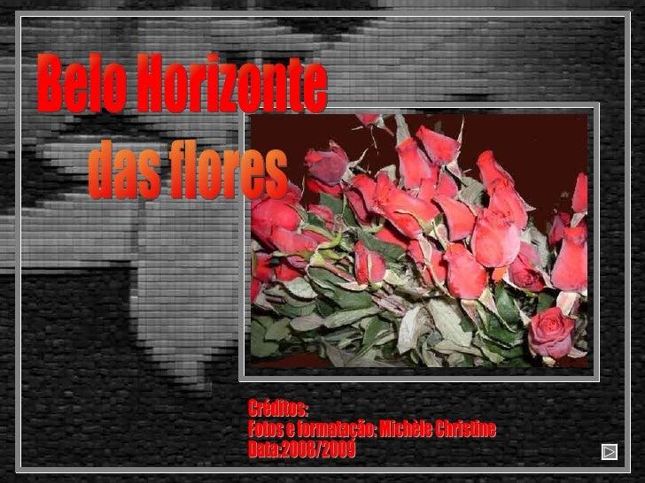 Belo Horizonte das flores Créditos: Fotos e formatação: Michèle Christine Data:2008/2009