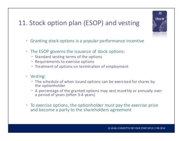 Startup ceo stock options