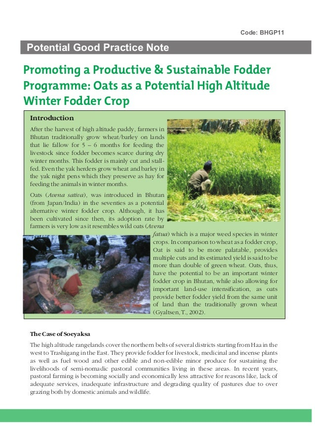 Code: BHGP11Potential Good Practice NotePromoting a Productive & Sustainable FodderProgramme: Oats as a Potential High Alt...