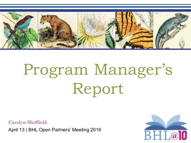 Program Manager's Report Carolyn Sheffield April 13 | BHL Open Partners' Meeting 2016