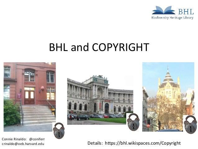 BHL and COPYRIGHTDetails: https://bhl.wikispaces.com/CopyrightConnie Rinaldo: @coniferrcrinaldo@oeb.harvard.edu