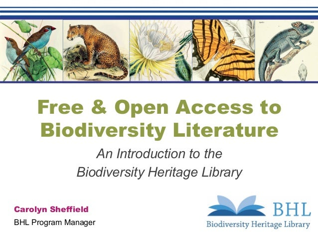 Free & Open Access to Biodiversity Literature An Introduction to the Biodiversity Heritage Library Carolyn Sheffield BHL P...