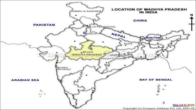 essay on bhopal gas tragedy