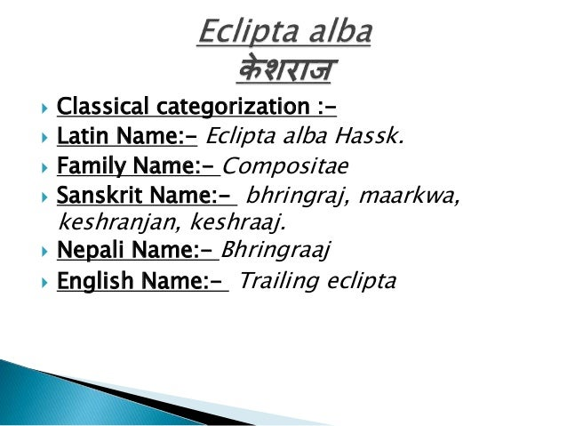         Classical categorization :Latin Name:- Eclipta alba Hassk. Family Name:- Compositae Sanskrit Name:- bhringra...