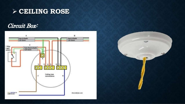 Ceiling rose electrical avie